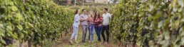 Friends in a vineyard holding glasses of red wine