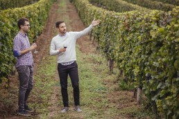 Two men in a vineyard holding glasses of red wine
